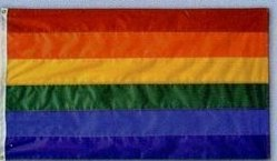 Annin Flagmakers 272413 Nyl-Glo Rainbow Flag-3 ft. X 5 ft. Review
