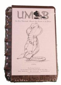 UMAB Rebreakable Board