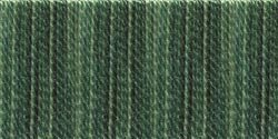 DMC Bulk Buy Color Variations 6-Strand Embroidery Floss 8.7 Yards Evergreen Forest 417-4045 (12-Pack) by DMC Bulk Buy
