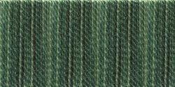 Bulk Buy: DMC Color Variations Six Strand Embroidery Floss 8