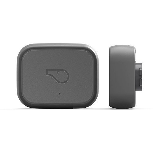 Whistle 3 / GPS Pet Tracker & Activity Monitor / Grey by Whistle
