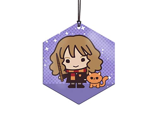 Trend Setters Ltd. - Harry Potter - Hermione and Crookshanks - Hexagon Metal Hanging Decoration - Lightweight Aluminum - Officially Licensed Collectible- Image Fused Permanently into Metal