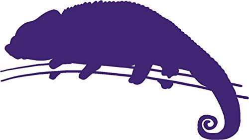 - hBARSCI Chameleon Vinyl Decal - 5 Inches - for Cars, Trucks, Windows, Laptops, Tablets, Outdoor-Grade 2.5mil Thick Vinyl - Purple