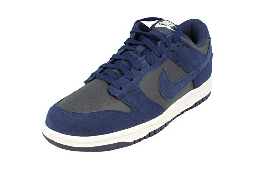 Nike Dunk Low Mens Trainers 904234 Sneakers Shoes (US 8, Binary Blue 401)