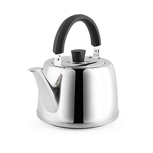 304 stainless steel kettle thickened large capacity 5L harmonica audio non-slip base quality teapot JPH