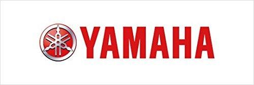 Yamaha LUB-20W50-AP-04 Yamalube 20W50 All Performance Oil Gallon; LUB20W50AP04 Made by Yamaha