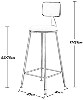 Terrific Amazon Com Barstools Chair With Back Rest For Kitchen Pub Caraccident5 Cool Chair Designs And Ideas Caraccident5Info