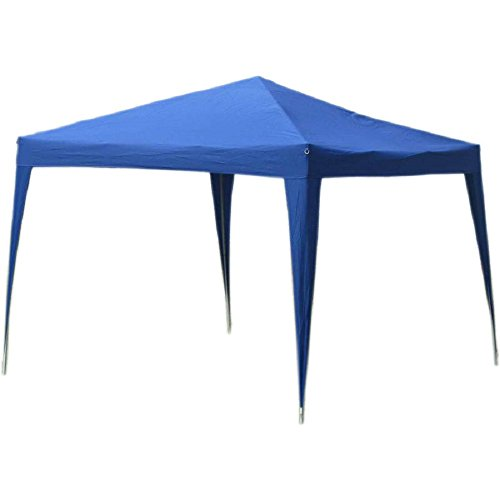 World Famous Sports 10'x10′ Instant Sun Canopy with Screen For Sale