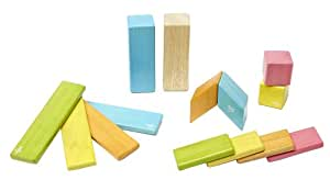 Tegu 14 Piece Magnetic Wooden Block Set, Tints