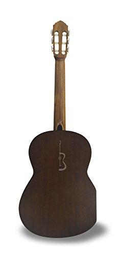 APC Instruments Comf Std - Instrumento de cuerdas: Amazon.es: Instrumentos musicales