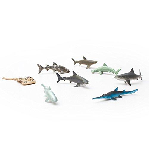 Fun Central AU195 Shark Toys product image