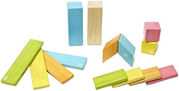 Tegu 14 Pc. Magnetic Wooden Block Set