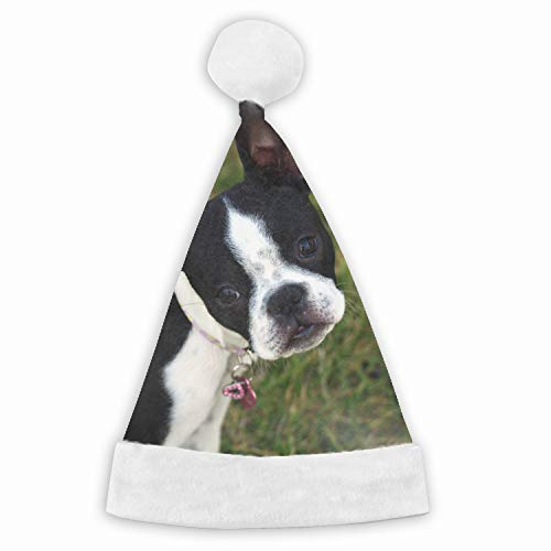 Boston Terrier Puppy Face Surprise Walk Velvet Santa Hat with Plush Trim, Two Size Fits Most for Adult's and Child ()