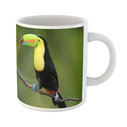 Semtomn Funny Coffee Mug Green Rica Keel Billed Toucan From Central America Blue 11 Oz Ceramic Coffee Mugs Tea Cup Best Gift Or Souvenir]()