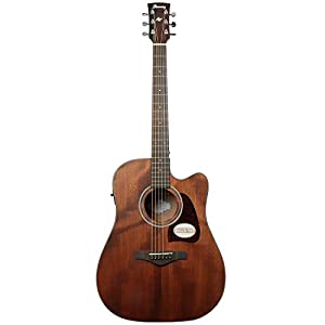 Ibanez AW54CE-OPN – Open Pore Natural