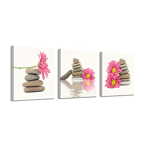 Canvas Artwork Flowers Picture Prints: Daisies & Stones Graphic Art on Canvas for Wall