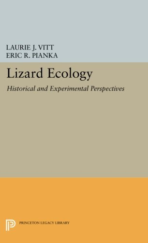 Lizard Ecology: Historical and Experimental Perspectives (Princeton Legacy Library)