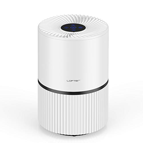 LOFTER Air Purifier for