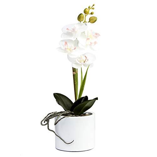Jusdreen Artificial Flower Bonsai with Vase Vivid Orchid Flower Arrangement Phalaenopsis Flowers Pot for Home Office Décor House Decorations(White Orchid)