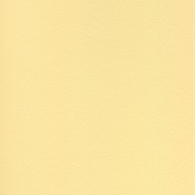 Colourfix Sand Sanded Pastel Paper- 20x28 Inch Sheet by FineArtStore