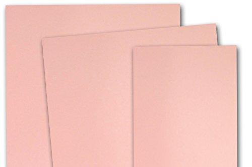 Stardream Rose (Stardream Metallic Rose Quartz DIY 5x7 Blank Invitations - 100 Pack)
