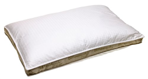 sealy pillow on standard posturepedic allergy shop hot summer white sales cover pack