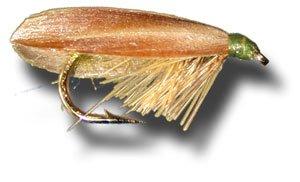 Slow水Caddis - – オリーブフライ釣りフライ Size 18 - – 3 Pack 3 B00KD8PRNE, 亀山市:eaa2383a --- sharoshka.org