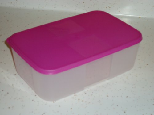 [Tupperware Freezer Mate #2 Medium Container with Raspberry Seal] (Tupperware Freezer Mates)