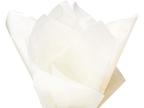 Ivory Recycled Paper (Soft Ivory Birch Bulk Tissue Paper 15 Inch x 20 Inch - 100 Sheets)