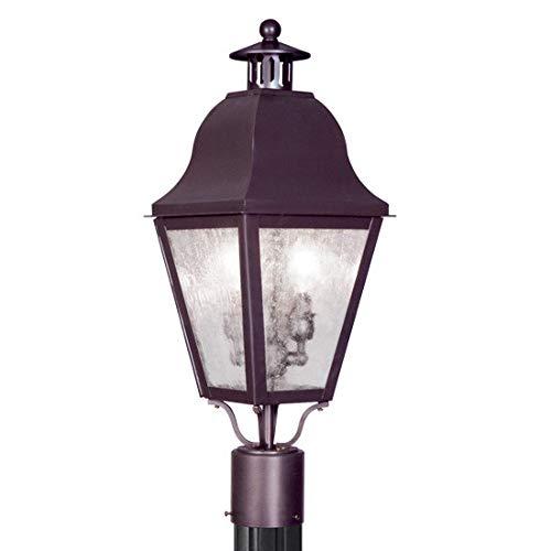 Livex Lighting 2552 Amwell Post Light with 2 Lights, Bronze