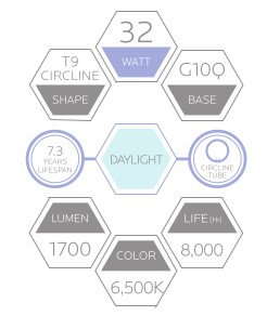 FC12T9//D 32-Watt 12 INCH T9 Fluorescent Circular Light Bulb G10Q 4-Pin Base Daylight 6500K 1600 Lumens 2-Pack Luxrite LR20585