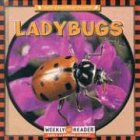 Ladybugs, Susan Ashley, 0836840550