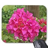 Hot Pink Bougainvillea Spectabilis Willd Mouse Pad Stylish, Durable Mousepad Design With Flowers Mouse Pad Protect Desktop Mouse Mat