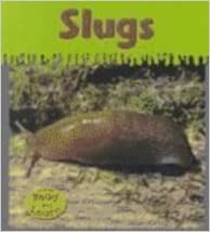 Book Slugs (Heinemann Read & Learn)