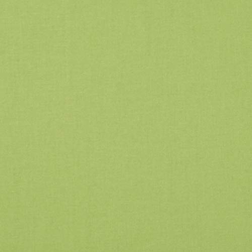 - Riley Blake Designs Confetti Cotton Solid in Color Spring Green Fabric by The Yard