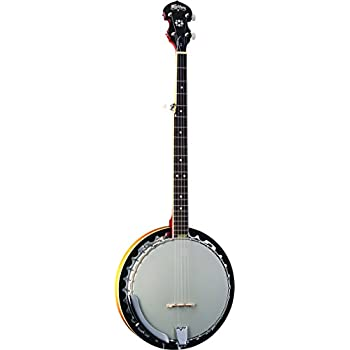 Washburn Banjo, 5 String