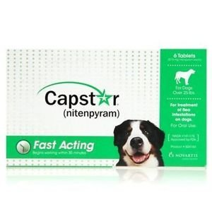 31N7WJz3WqL - Novartis Capstar Green for Dogs Over 25 pounds - 6 Tablets