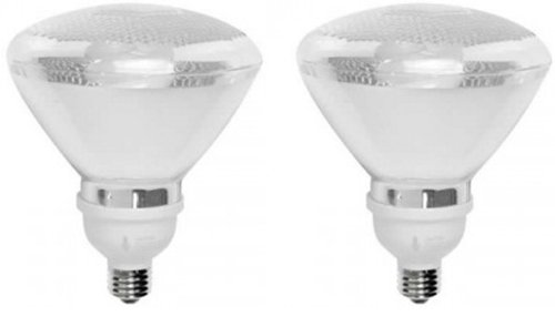 TCP 7P3823B2 23W PAR38 Flood Compact Fluorescent Bulb, Soft White, 2-Pack