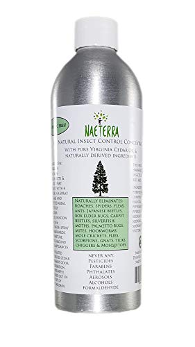 Four Cedar (Naeterra 16 Oz. Cedar Oil Concentrate- All Natural Indoor/Outdoor Natural Insect Control Spray- 16 Oz - With 24 Ounce Empty Spray Bottle - Makes 64+ Ounces Concentrated! Dilute Before Use-Natural Non-Toxic Bug Spray)