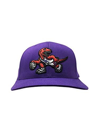 Mitchell & Ness Toronto Raptors Adjustable Snapback Hat NBA Basketball Straight Brim Baseball Cap (One Size, Purple Throwback) ()
