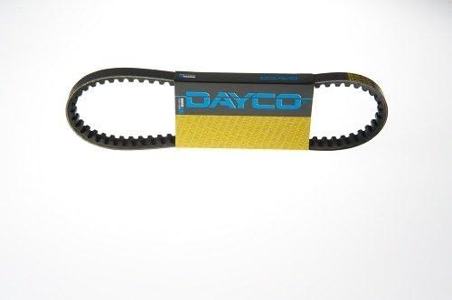 Dayco 10A0975C Cinghia