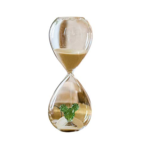 HENT Hourglass Timer Creative Personality Home Decoration Desert Cactus Hourglass, Fresh Nordic Wind Glass Products Toy Home Office Table Decoration Gift (Size : S)
