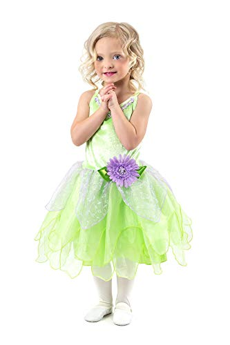 RG Costumes 91415 Childs Fairyland Witch