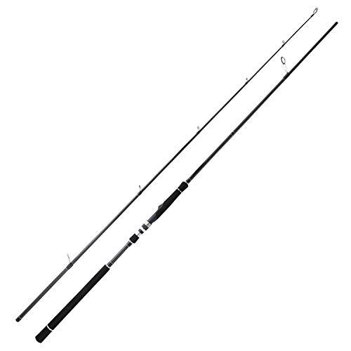 BERRYPRO Striper Fishing Rod Striped Bass Rod Light Action Surf Spinning Rod (9'/9'6'')