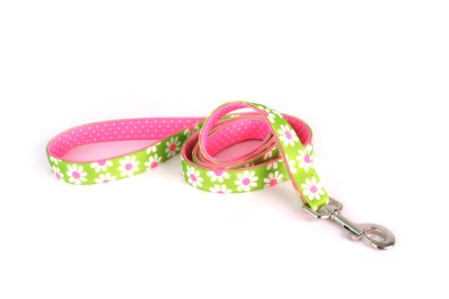 (Yellow Dog Design Uptown Lead, 1-Inch, Green Daisy on Pink Polka, Small Dots)