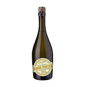 Birra artigianale bionda Trentina
