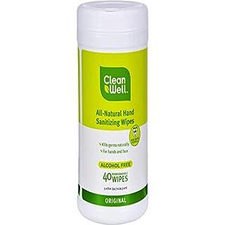 Cleanwell Hand Sntzr Wipe Orgnl