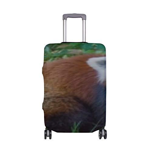 Krasnaya Panda Malaya Panda Trava Polosatyj Pattern Print Travel Luggage Protector Baggage Suitcase Cover Fits 18-21 Inch Luggage
