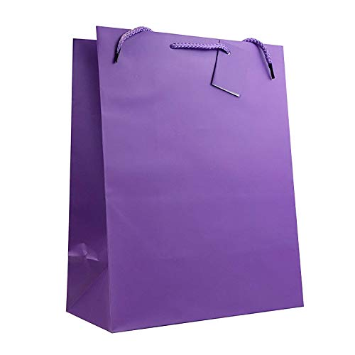 Allgala 12PK Value Premium Solid Color Paper Gift Bags (13
