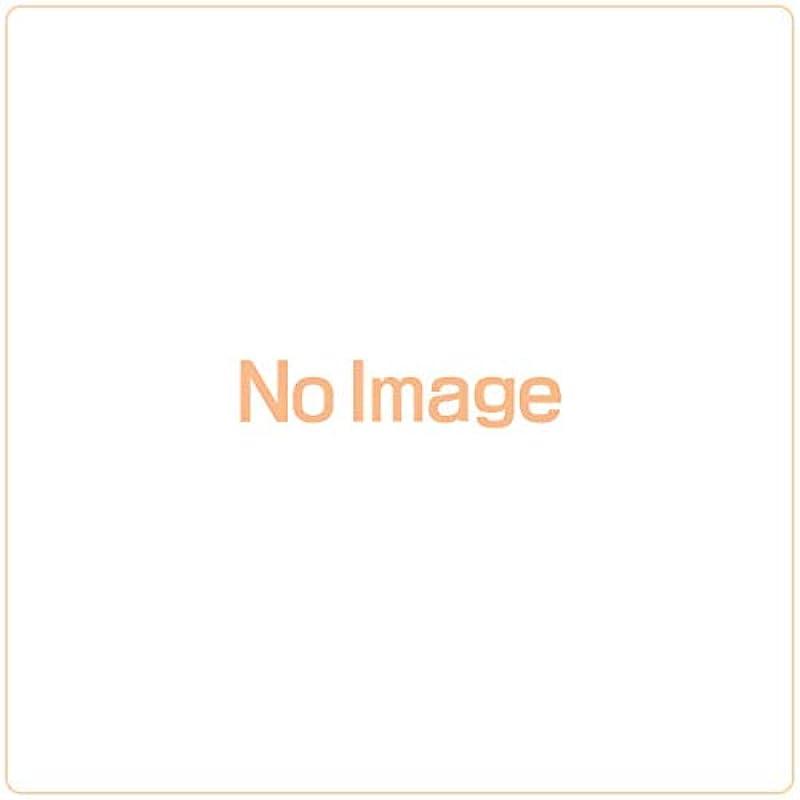 (일시(임시))원피스 웨하스 계승되는 의사 (20개입) 쇼쿠간(완구가 딸린 식품)・웨하스 (From TV animation ONE PIECE)